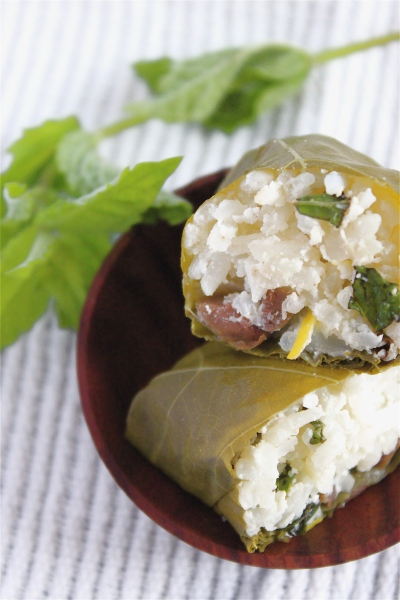 Grape leaves with goat cheese, olives, raisins, and mint