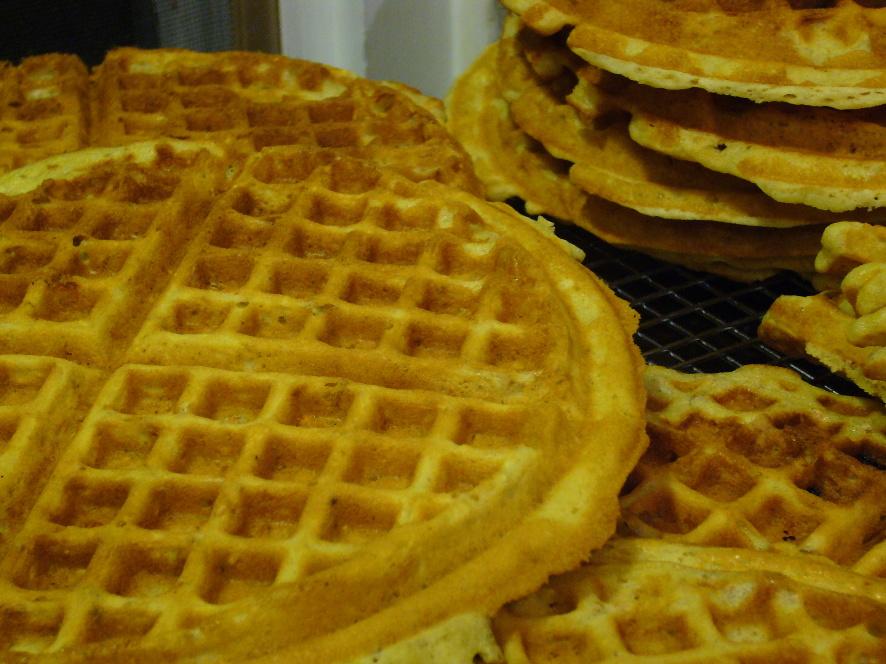 Plain Ol Waffles