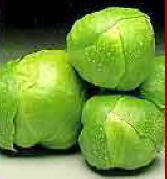 Brussel_20sprouts_1_
