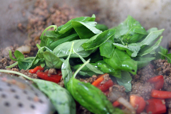 Thai Basil Stir-Fry ( Put Kaprow)