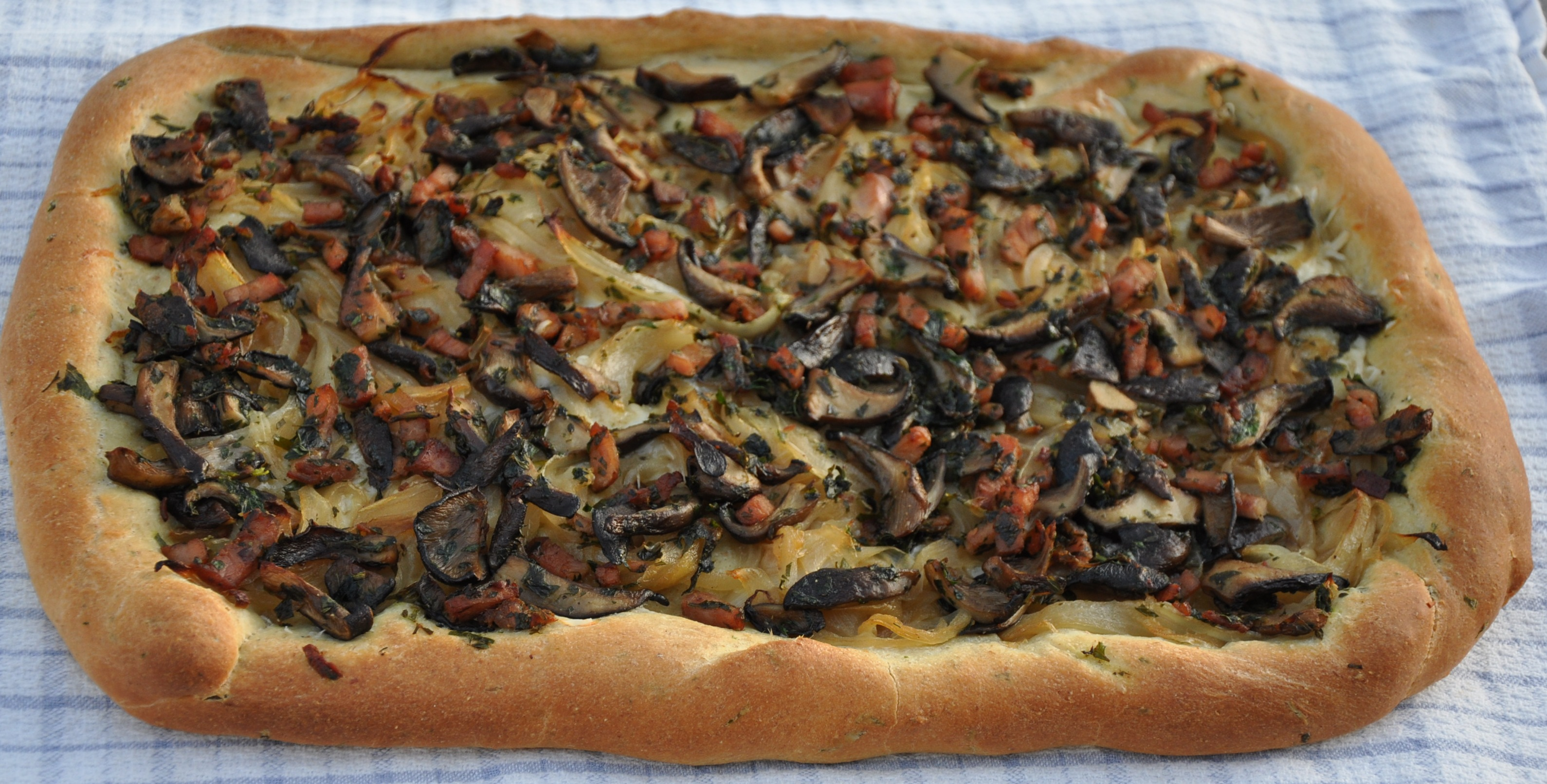 Pissaladire with Oyster Mushrooms and Black Forest Ham
