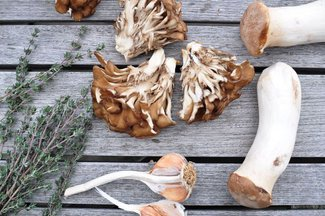 Sautéed hen of the woods and king trumpet mushrooms with garlic and fresh thyme