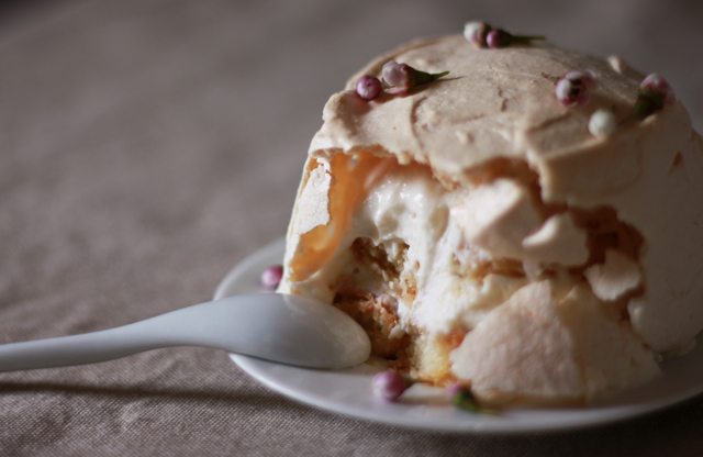 Tiramilova (a plum wine tiramisu masquerading as a pavlova)