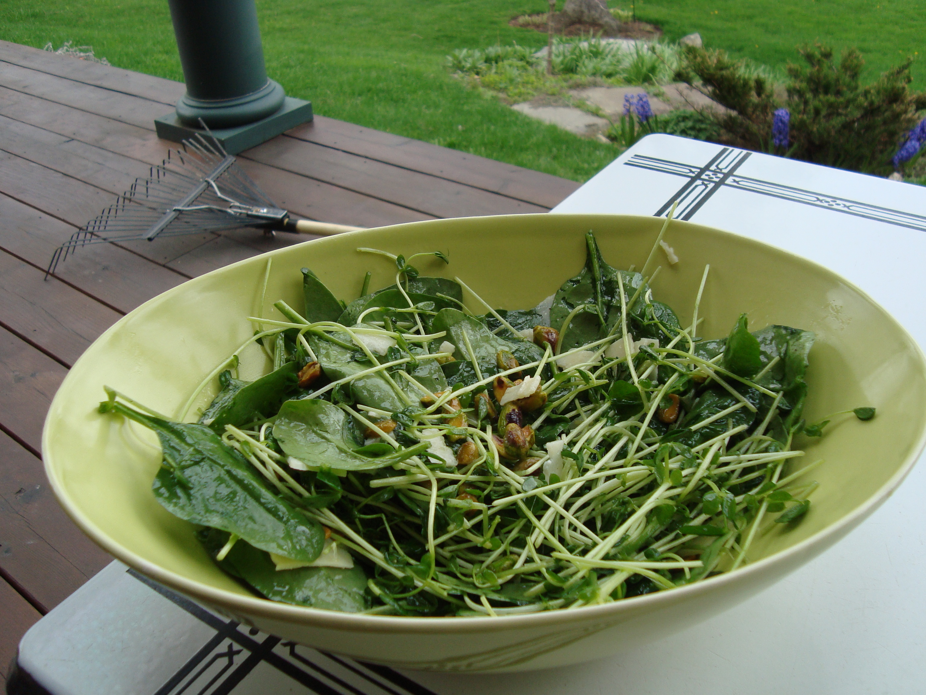 Baby Spinach and Pea Shoot Salad with a Honey Lemon Vinaigrette