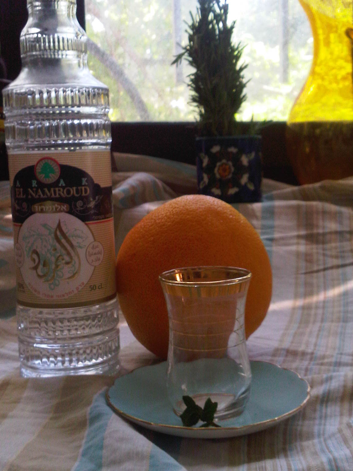 Pink Grapefruit Arak Cocktail