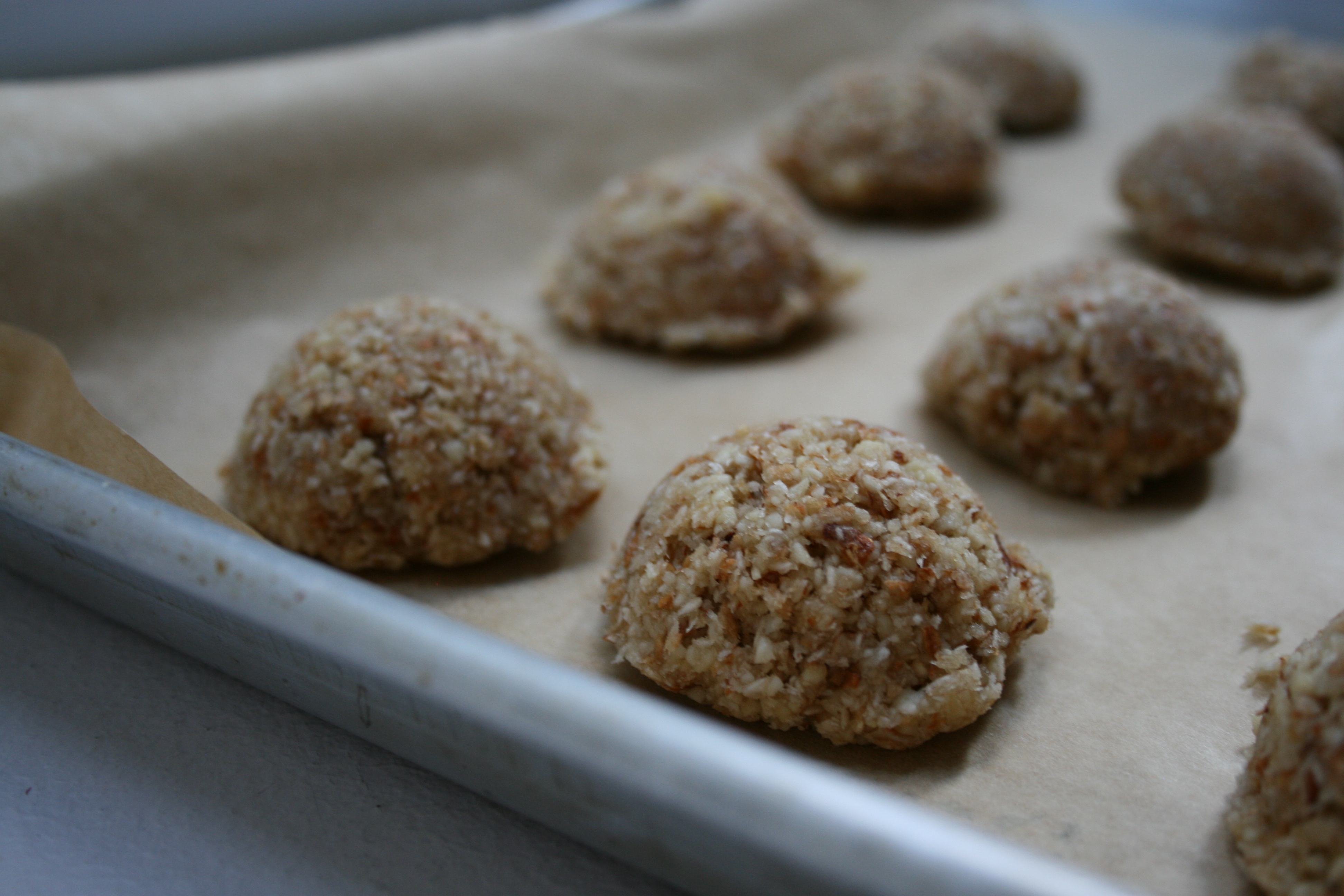 Raw Vegan Coconut Almond Macaroons