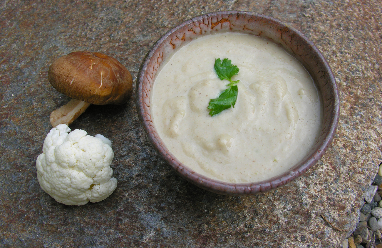 Portrait of a soup in cream