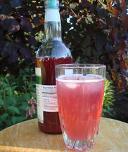 Raspberry Shrub (aka Drinking Vinegar)