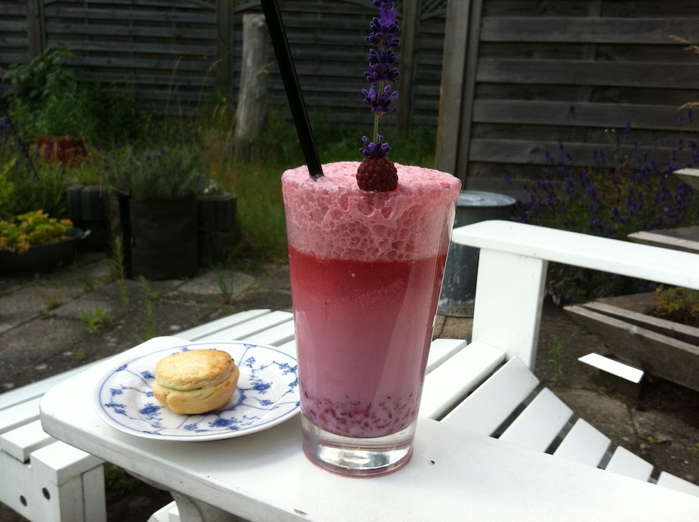 Raspberry Egg Cream