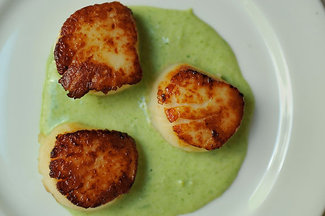 Scallops with tarragon cream