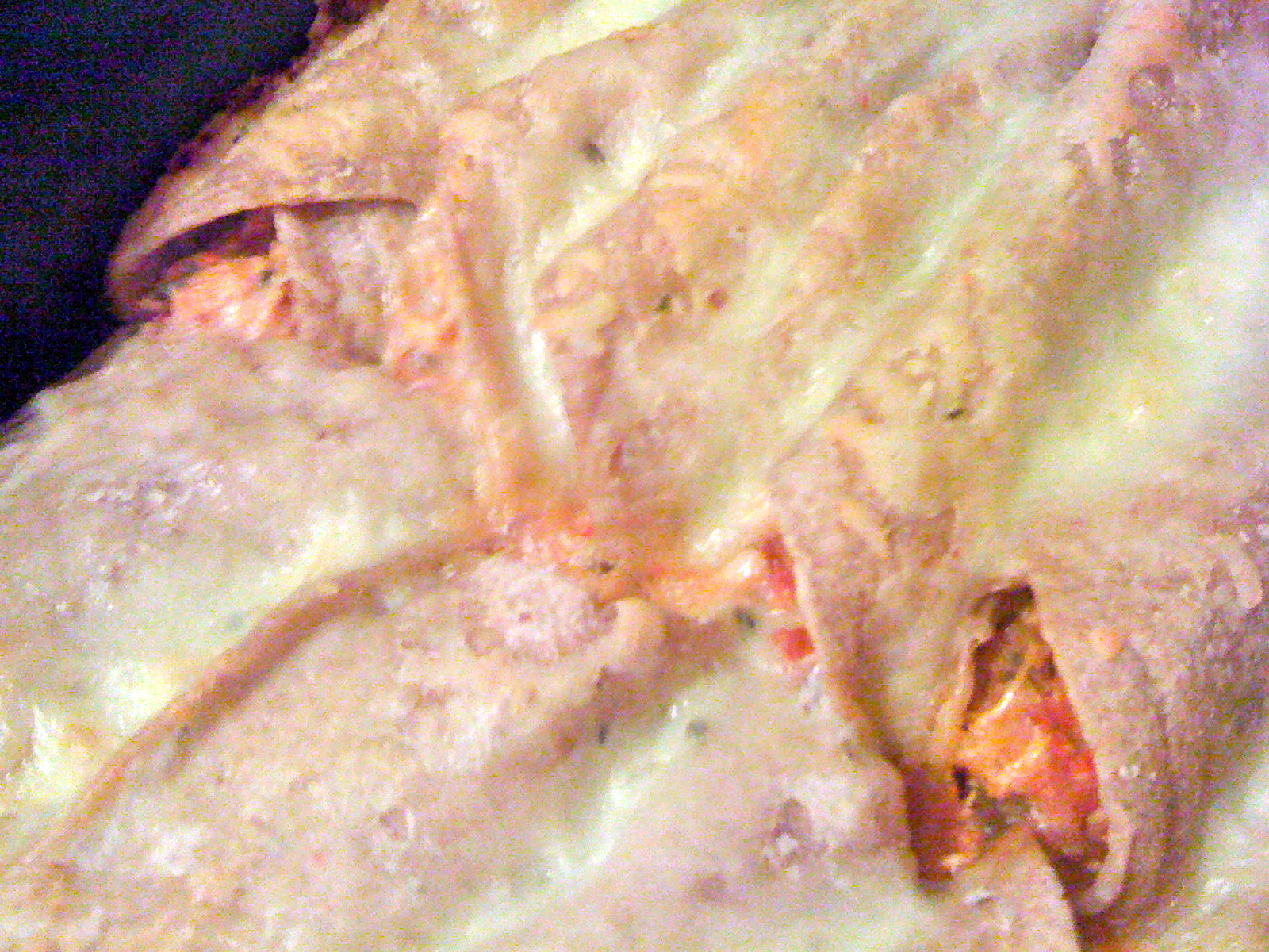 Spicy/Creamy Chicken Enchiladas