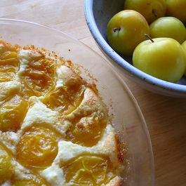 Crustless_ricotta_pie_with_yellow_plums