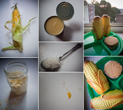 Corn_collage