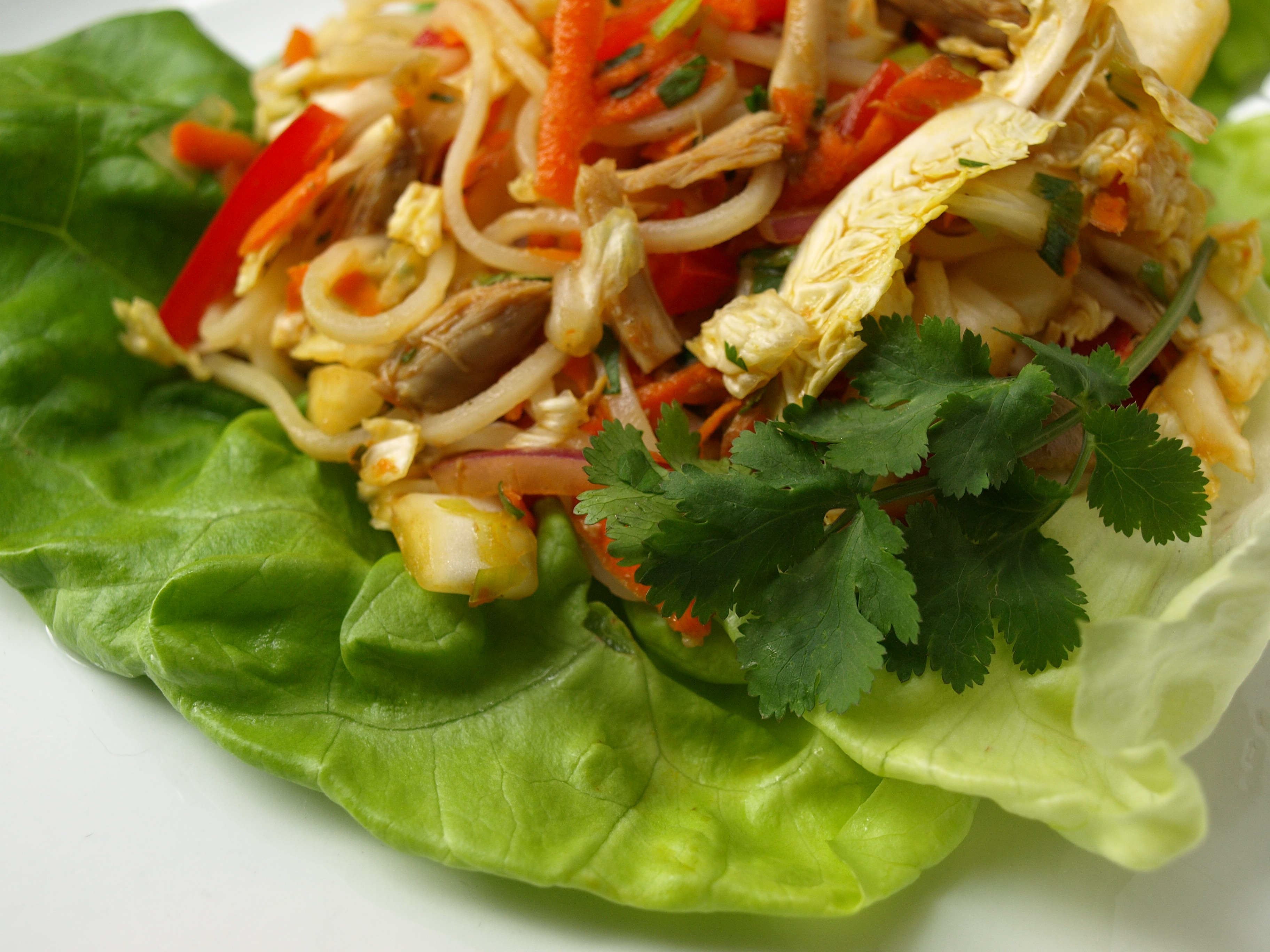 Asian Turkey Salad Lettuce Wraps