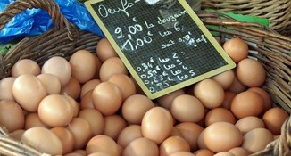 Farmers-market-pictures-eggs-d