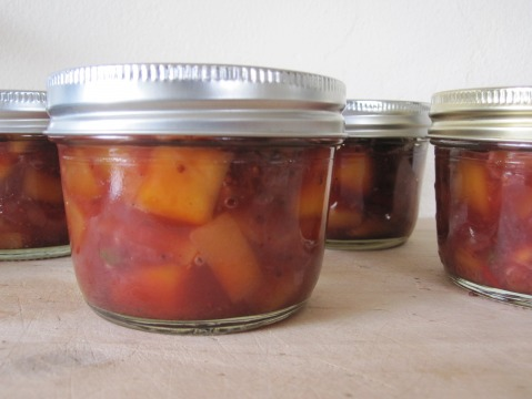 Mango Cranberry Chutney