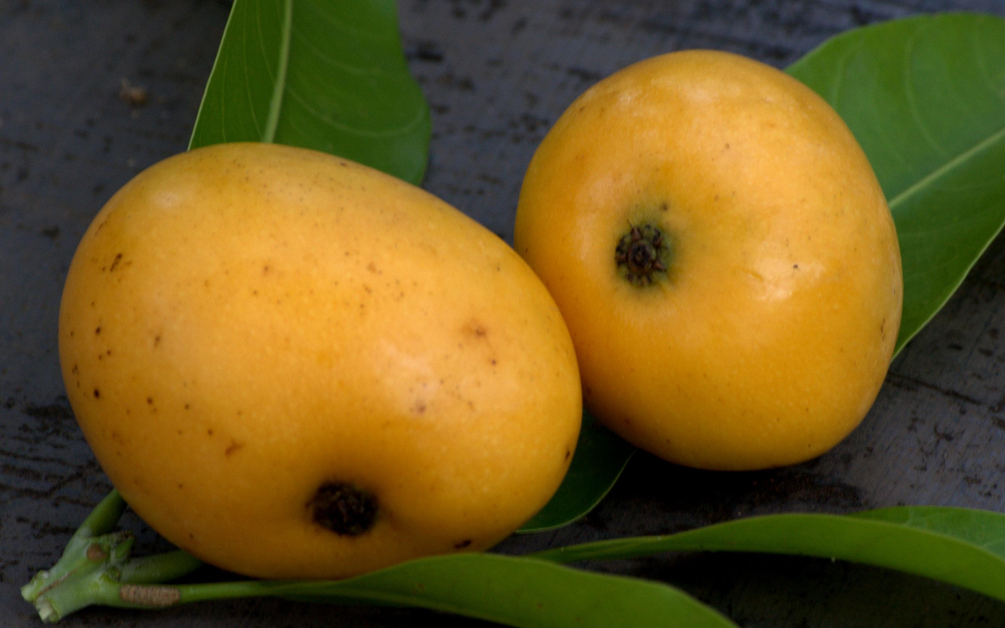 Mango Puree recipe on Food52.com