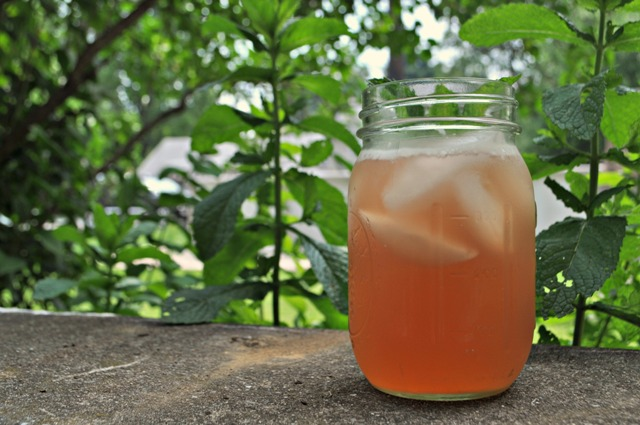 Rhubarb Iced Tea