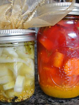 Orange Pickled Fennel
