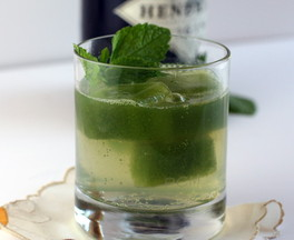 Cucmber Mint Gin and Tonic
