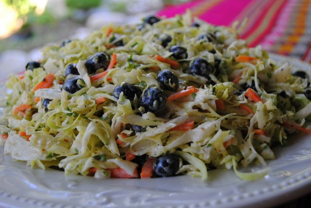 BLUEBERRY COLESLAW