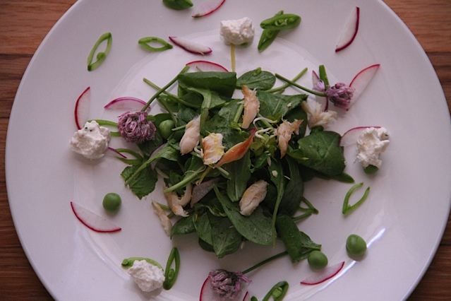 Smoked Trout Arugula Salad with Horseradish