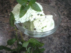 Nicki's Mint cCocolate Chip Ice Cream