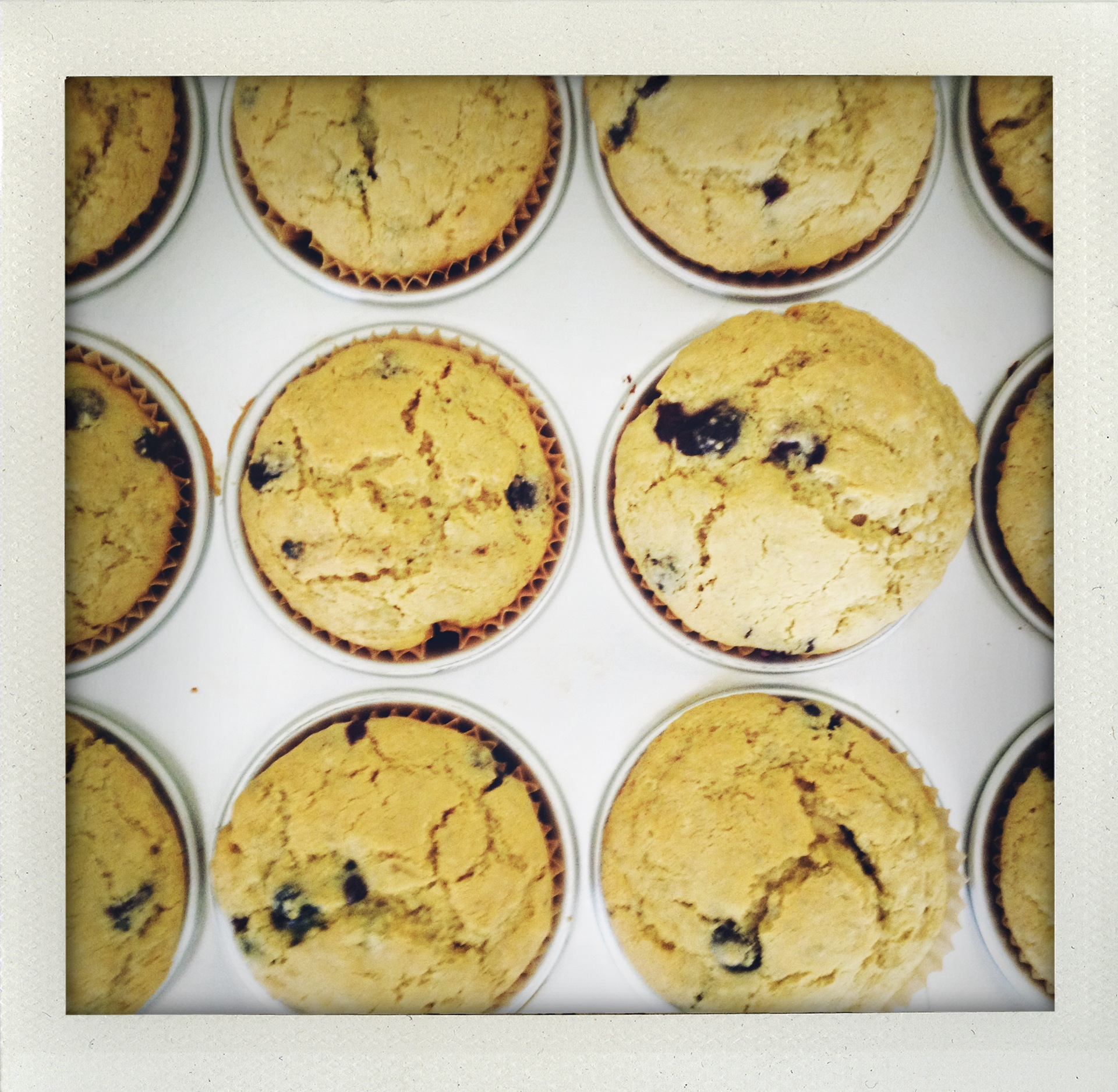 Chia & Blueberry Muffins