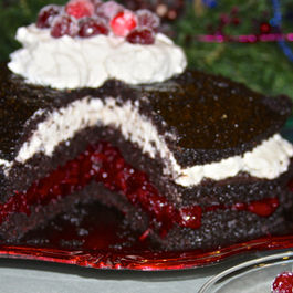 Spiced_cranberry_chocolate_cake-52