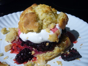 54_below__blackberry_shortcake_029