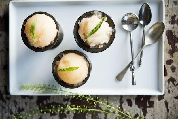 Citrus Tarragon Sorbet from Food52