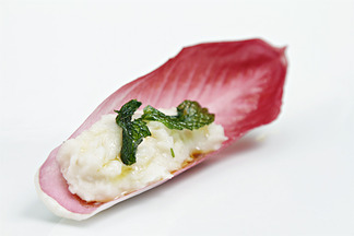 Img_3356_cannellini_bean_dip_with_pan-fried_mint_in_red_endive_boat