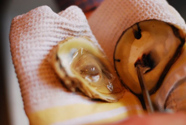 Our Shuck & Slurp method for eating Oysters