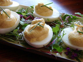Smoked_trout_deviled_eggs