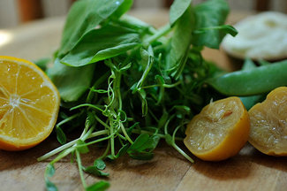 Pea_shoots_and_sugar_snaps_with_preserved_lemon_cream