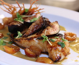 Miso Glazed &quot;Mero&quot; Sea Bass