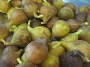 Windfall Fig Confiture