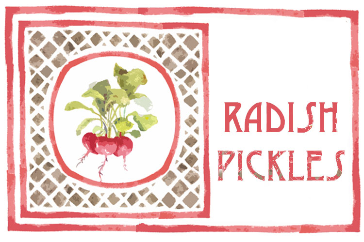 Refrigerator Radish Pickles