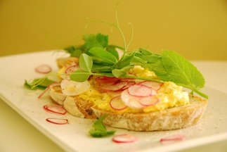 Curried Egg Salad, Radish and Fall Pea Shoot Tartine