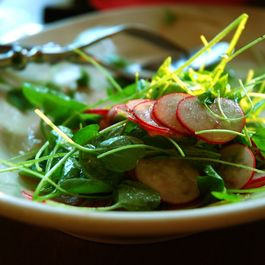 Radish_and_cress_salad