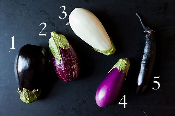 Eggplant_1