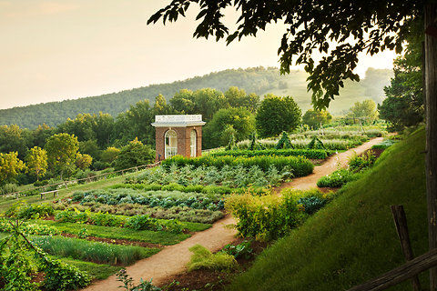 Monticello-blog480