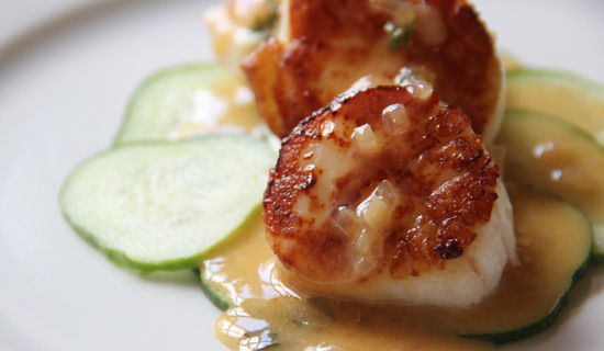 Scallops_550x320