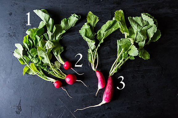 Radishes_1