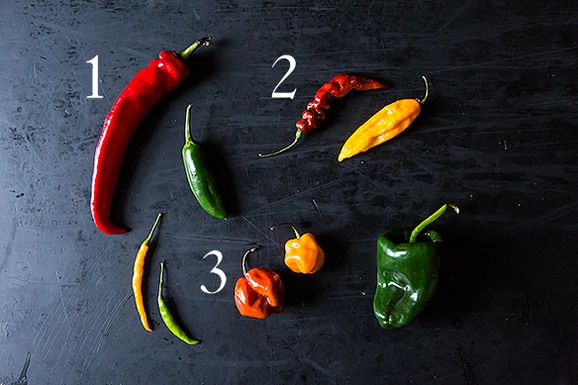 Peppers_1