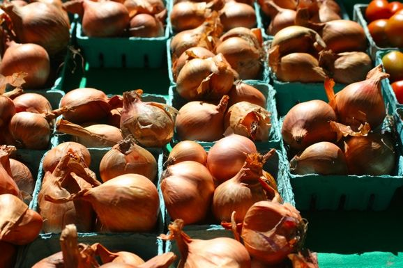 2012-10-08-shallots