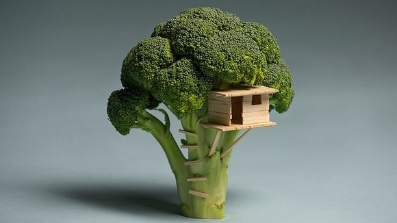 Broccolihouse