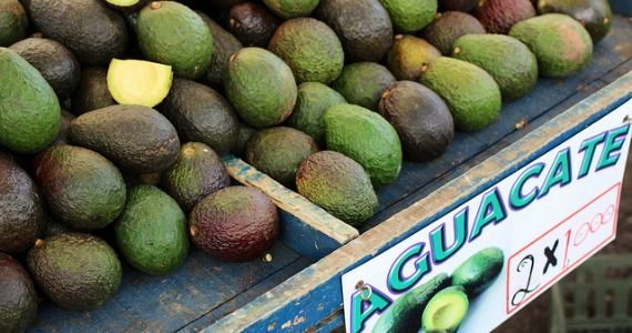 Avocado-farm-stand