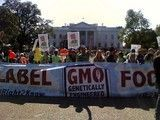 Washington-state-gmo-labeling-initiative-to-go-to-the-voters-in-a-november-ballot_dnm_homepage