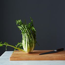 How to Prep Puntarelle